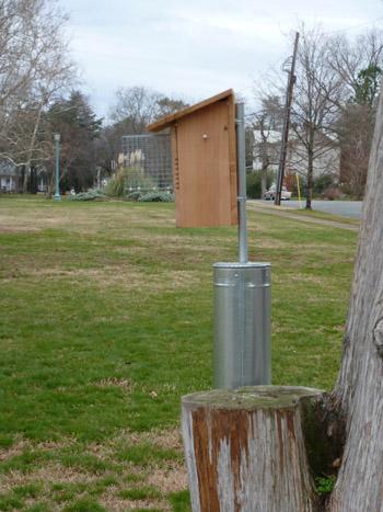 Bluebird Box near Stone House